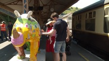 Rhino trail begins in Devon - can you spot them all?