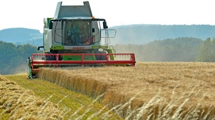 Lincolnshire has the highest rate of rural crime in the country.