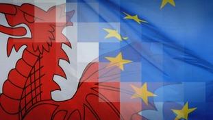 Welsh & EU flag