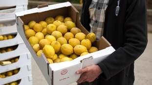 Six tonnes of organic lemons were deemed 'unsuitable to meet retailer  specification based on appearance'.