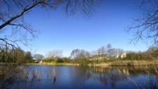 Dafen Pond