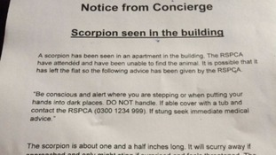Notices warning residents not to handle it have been posted