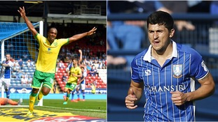 Norwich City and Sheffield Wednesday will both expect to be among the Championship promotion contenders.