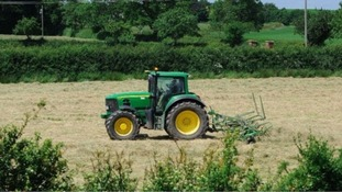 Farmland prices in Wales to decrease as Brexit unease lowers demand