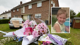 Boy, 3, killed by dog named as Dexter Neal