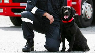 West Midlands Fire Service pay tribute to 'much-loved' four-footed friend