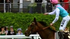 Frankel retires after tomorrow's race at Ascot