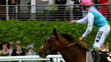 Frankel retires after tomorrow&#x27;s race at Ascot