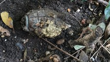 Gardener unearths grenade in south London back garden