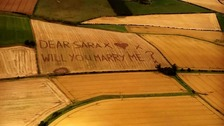 Boyfriend proposes after farmers mow 'will you marry me'