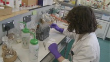 Cardiff researchers receive prostate cancer grant