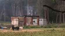 Man and up to 10 horses dead after fire at stables