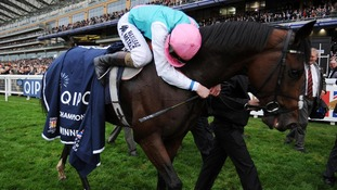 Tom Queally hugs Frankel after winning the Qipco Champion Stakes