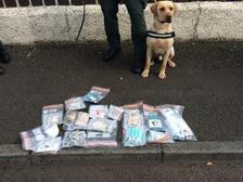 The drugs were seized with the help of police dog Max.