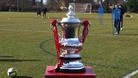 The FA Cup at Stevenage, February 2012