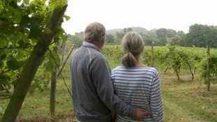 Ian and Jane Awty looking over the vineyard