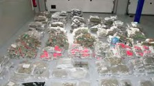 Cannabis haul worth millions