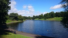 Sunshine to end the meteorological Summer 2016 at Sefton Park