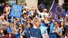 Pro-Europe protesters flood London in over Brexit vote.