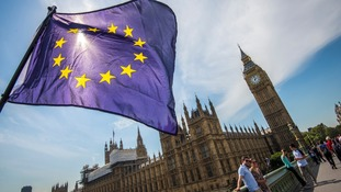 Demands for second EU referendum to be debated by MPs