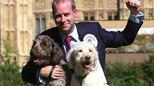 Jonathan Reynolds MP with Labradoodles Clinton and Kennedy