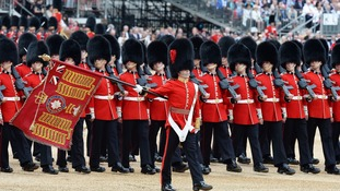 Inquiry into 'Queen's guard snorting powder in palace'