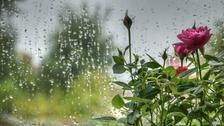 September showers RICHARD BAYLEY