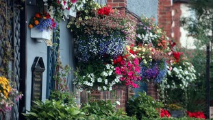County Durham blooms in competition