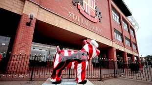 Snowdogs at Sunderland's Stadium of Light