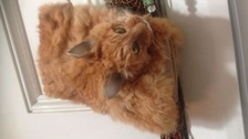 Seller warns the taxidermy bag is not for the faint hearted