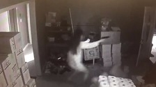 Woman leaps out at house burglars with gun blazing