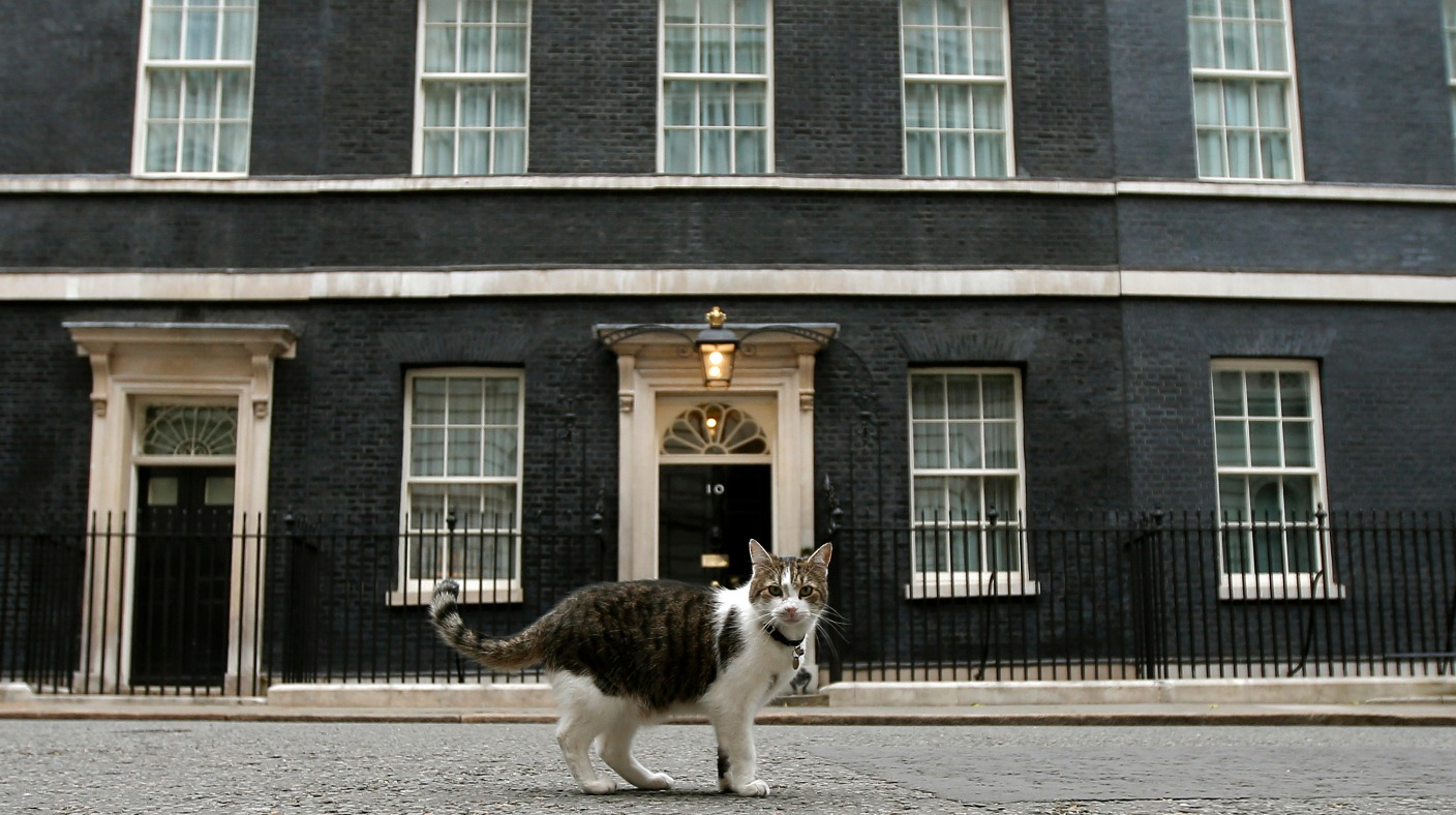 39 cats come first 39 in downing street says former deputy pm nick clegg itv news. Black Bedroom Furniture Sets. Home Design Ideas