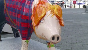 Ed Sheer-Ham was among the fibreglass pigs up for auction.