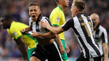 Neil left stunned as Norwich City capitulate at Newcastle