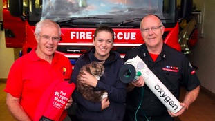 A pet oxygen mask has been used for the first time in Shropshire to revive a cat in a house fire.