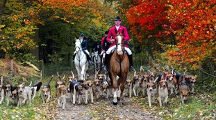 A fox hunt gets underway in East Yorkshire in 2015.