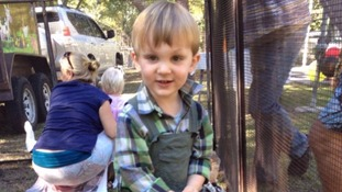 Two-year-old boy 'died for six minutes' after being bitten by highly venomous snake