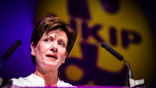 UKIP leader Diane James who's retired after just 18 days