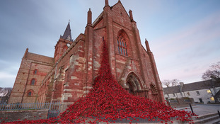 Ulster Museum to host iconic poppies installation
