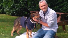 Police dog Finn and his handler PC Dave Wardell are recovering from their injuries.