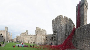 In pictures: sea of poppies on display at Caernarfon Castle