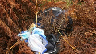 Holdall in bracken