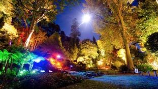 Gardens lit up