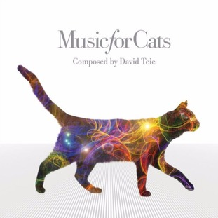 'Music for Cats' song goes to tops the chart.