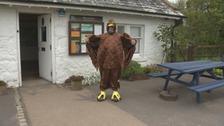 Brian Nolan dressed up as a bird.