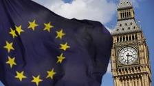 EU flag/Parliament