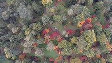 Aerial view of the stunning Autumn colours at Westonbirt
