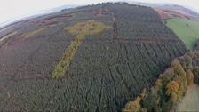 VIDEO: Mysterious Celtic cross discovered in Donegal forest