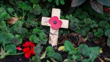 Poppy Appeal launches in Cumbria