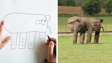 Father takes drawings of son, 6, and makes them reality